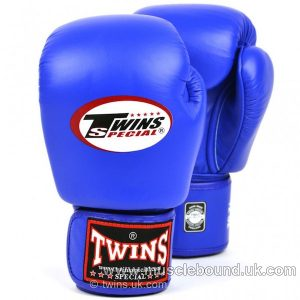 kids Twins Blue Velcro Boxing Gloves