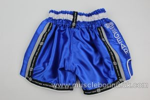 new arrival kids blue / grey side fight shorts
